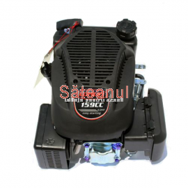 Motor ax vertical, Loncin, 5 CP | sateanul.ro