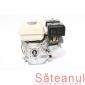 Motor Honda, 5.5 CP, detalii | sateanul.ro